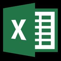 MS Excel 2013 logo